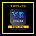 定制型网站开发