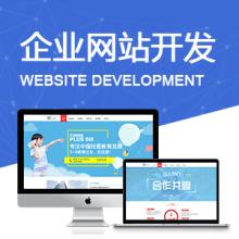 威客服务:[136568] 网站开发