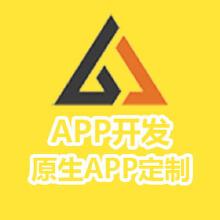 威客服务:[136600] 原生APP开发