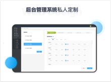 威客服务:[136872] 网站接口数据开发服务