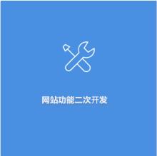 网站功能二次开发