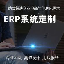 威客服务:[137161] 企业ERP系统、设计、开发、实施,全方位定制