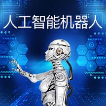 AI智能服务机器人/语言识别/图像识别/自然语言处理/智能软件开发