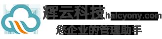 辉云科技(天津)有限公司