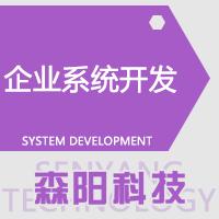 管理系统定制开发 酒店系统 教育系统 商城系统