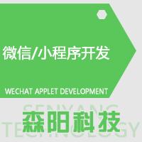 威客服务:[137931] 小程序开发 微信开发 网站定制 H5开发 商城小程序