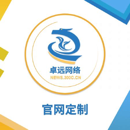 官网定制开发 高端企业官网 众包网站