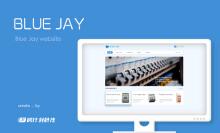 BLUE JAY企业官网【PC/手机端】【响应式布局】-外贸网站