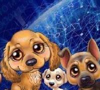 区块链宠物狗APP软件开发