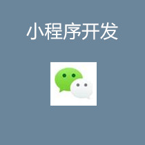 威客服务:[139430] 小程序开发