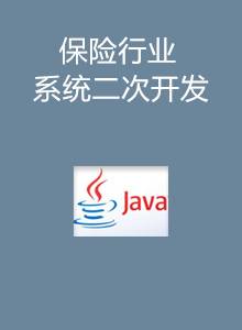 保险行业软件二次开发