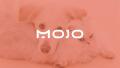 宠物用品品牌MOJOlogo