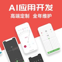 威客服务:[159898] AI应用开发