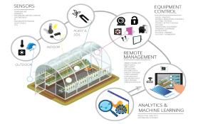智能温室系统(Smart Greenhouse)