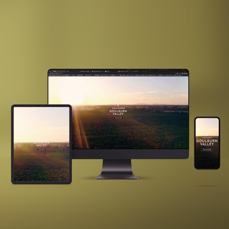 澳果源官网开发追溯源产品展示型