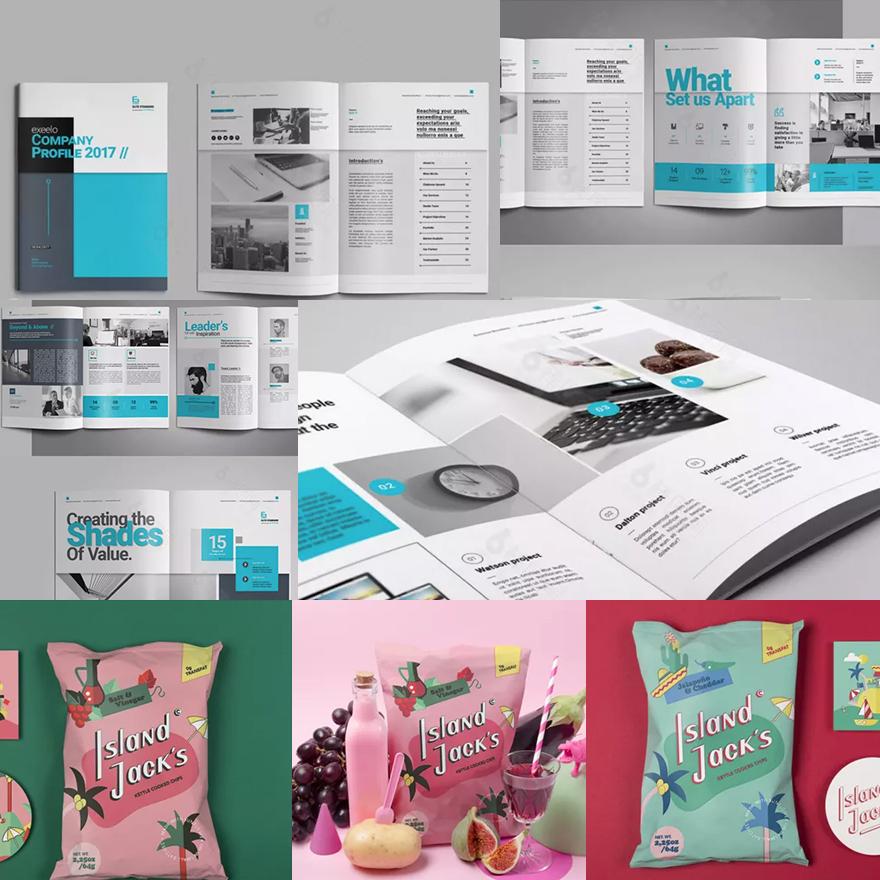 印刷品(宣传册/包装)案例