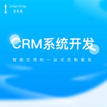 CRM系统开发