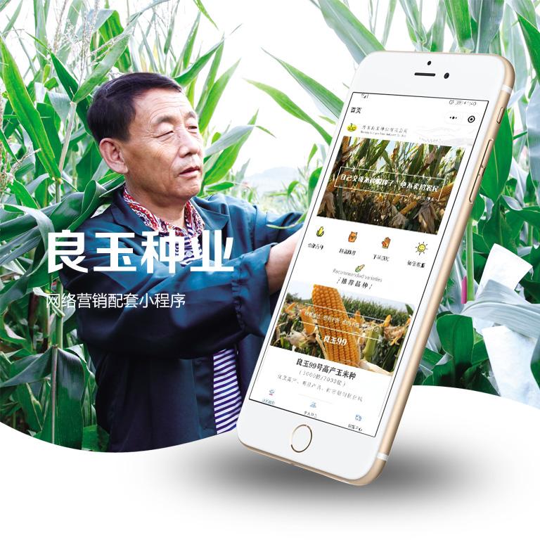 良玉种业网络推广项目配套小程序开发