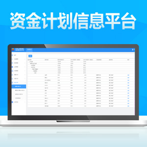 集团资金计划管理信息平台