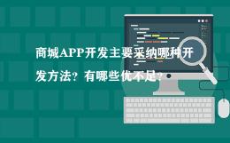 商城APP开发主要采纳哪种开发方法?有哪些优不足?