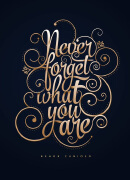 个性国外优秀字体设计作品集欣赏