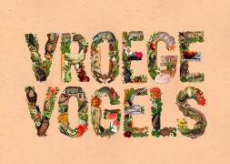 Patrick Simons创意绿色自然生态字母设计欣赏