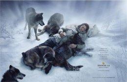 广告也震惊:关于香格里拉酒店广告欣赏