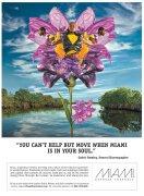 超赞的迈阿密旅游创宇平面广告设计欣赏