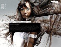 国外头发护理机构个性品牌形象设计