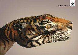 唯和谐方共生:WWF保护动物公益广告欣赏