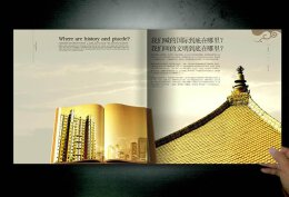 绿地世纪城楼书设计