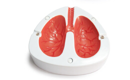 肺部样式的咳嗽感应烟灰缸——创意烟灰缸