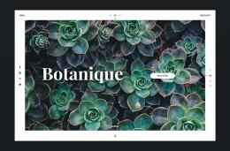 国外Botanique概念花卉网站设计欣赏