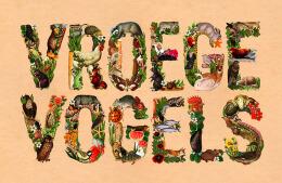 国外设计师Patrick Simons生态主题创意字母设计欣赏