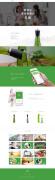 绿色版小鲜侠网站首页设计欣赏
