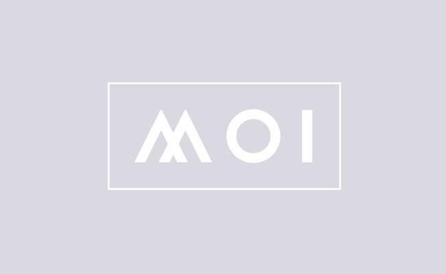 北欧MOI家具品牌VI形象设计作品(12P)