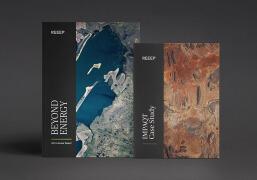 国外REEEP年度报告手册设计欣赏