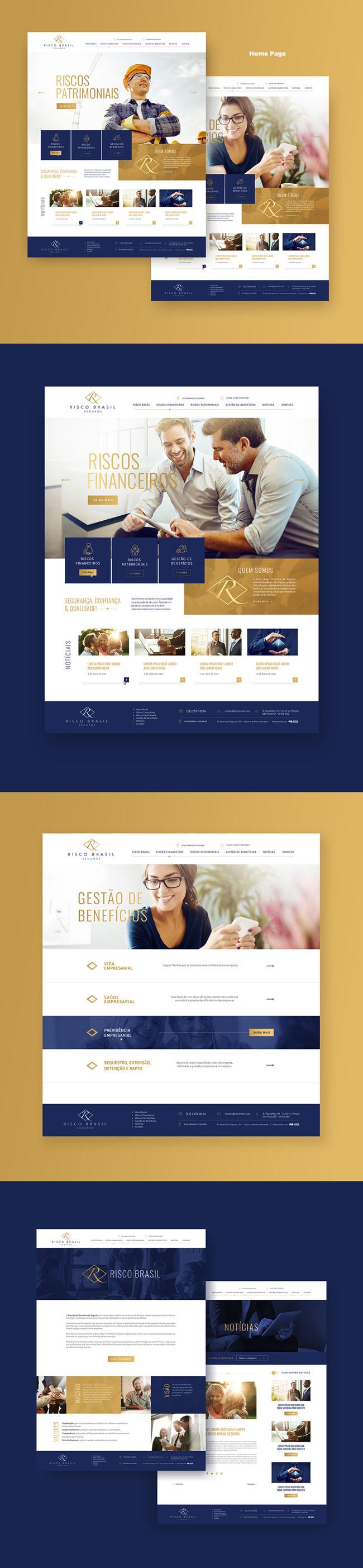 巴西Risco Brasil风险投资公司网页设计欣赏