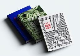 国外设计师Cyan Triangle精美的书籍模版设计作品