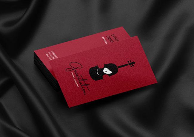 国外Ilia Kalimulin女性弦乐四重奏形象设计