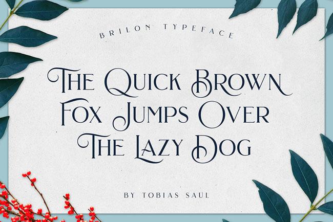 国外漂亮的Brilon英文字体设计