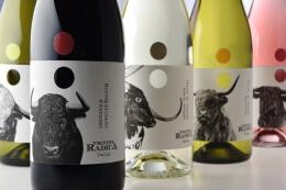 Vigneti Radica葡萄酒精美酒瓶包装设计欣赏
