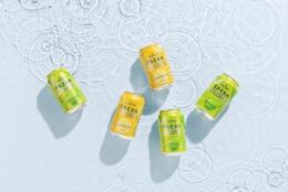 Vichy饮料水果香味饮品功能饮料包装设计
