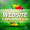艾斯专业网站开发