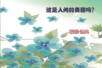 三亚国际兰花博览会-兰花解说词