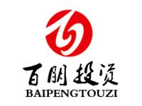 百朋投资管理公司logo及名片设计